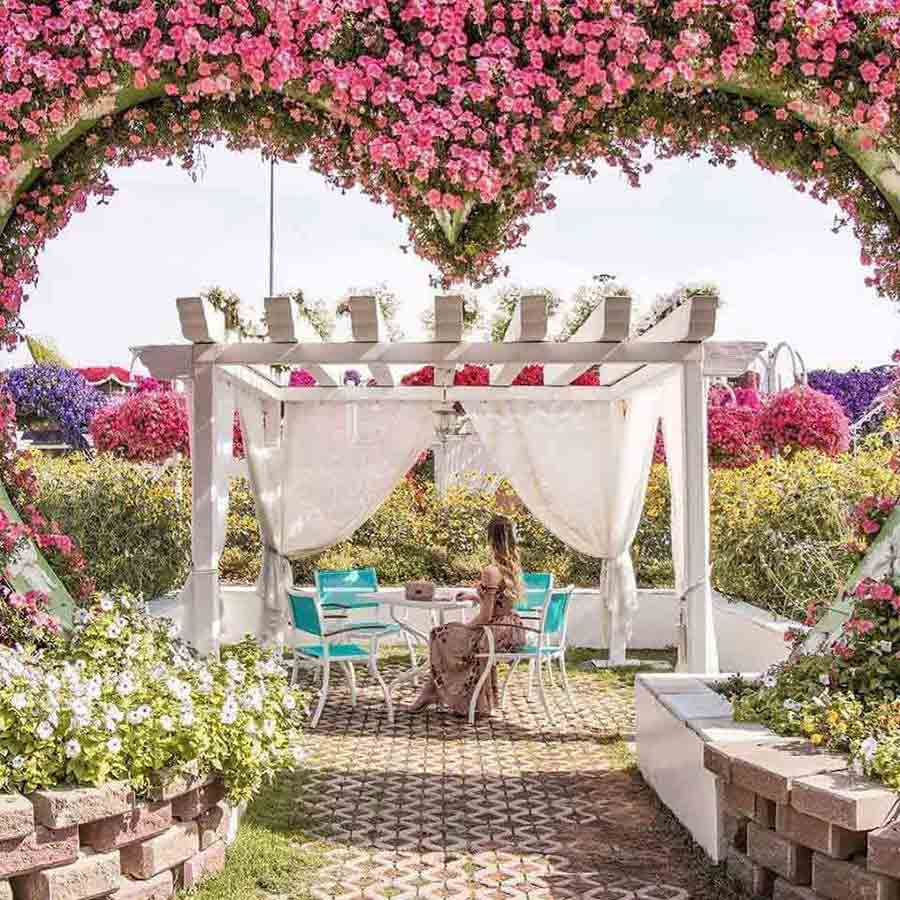 Dubai Miracle garden a romantic place to visit with our partner in Dubai images and photos