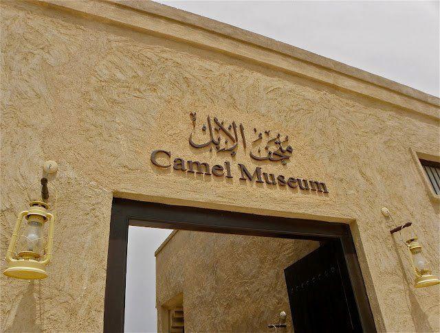 Camel mesuem To Visit In Dubai