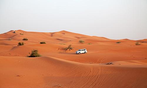 Red Dune Safari In Best Desert Safari Dubai